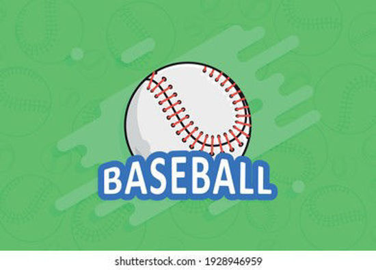 Picture of Non Profit Baseball (1)